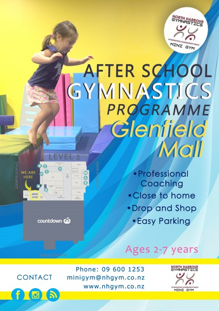 Mini Gym glenfield